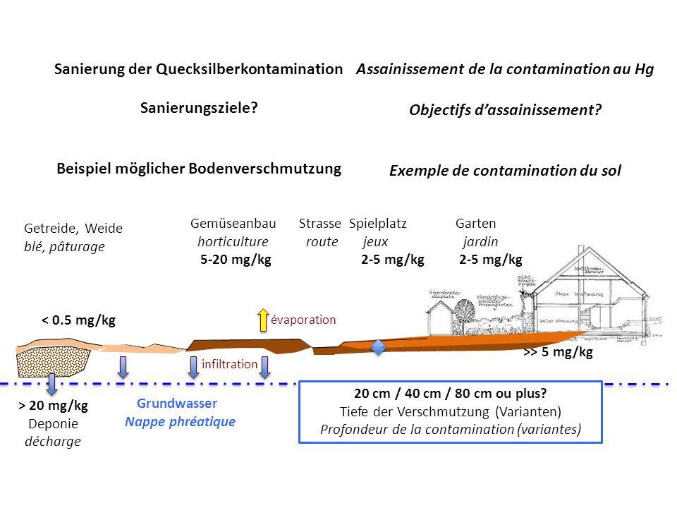 Sanierung der Quecksilberkontamination Sanierungsziele