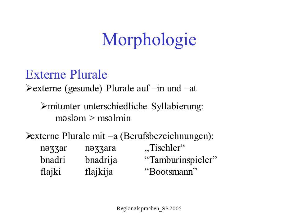 Morphologie Externe Plurale externe (gesunde) Plurale auf –in und –at