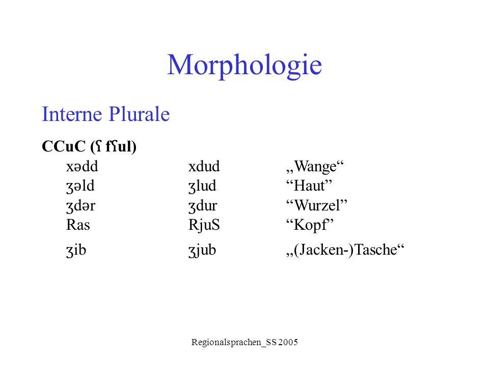 "Morphologie Interne Plurale CCuC (ʕ fʕul) xǝdd xdud ""Wange"