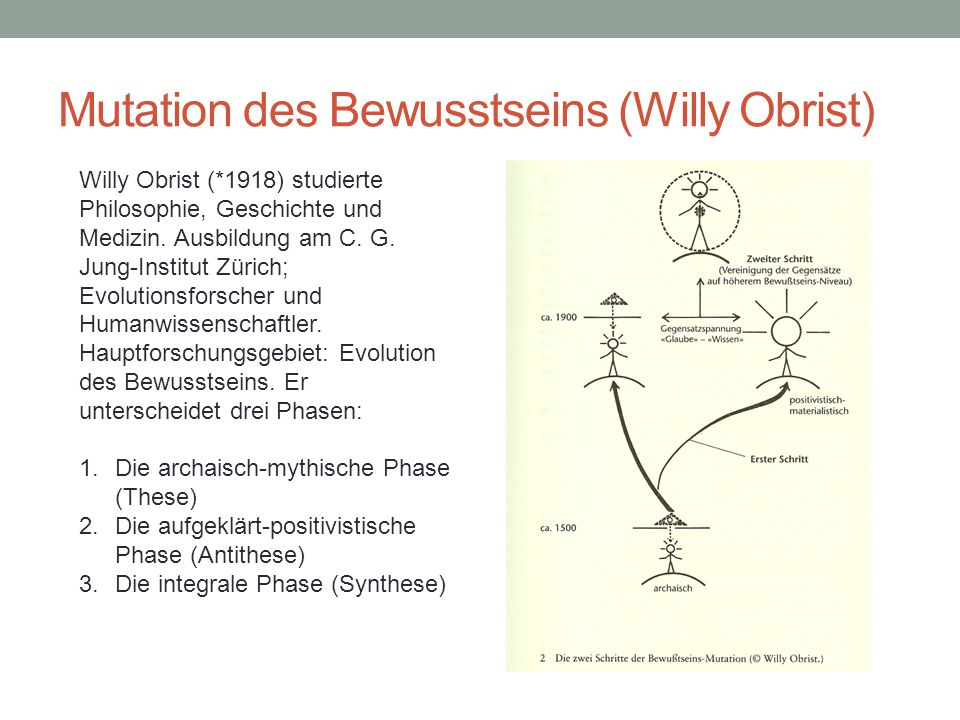 Mutation des Bewusstseins (Willy Obrist)