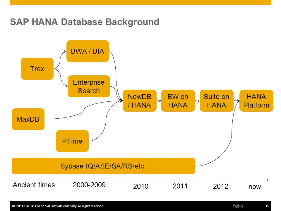 SAP HANA Database Background