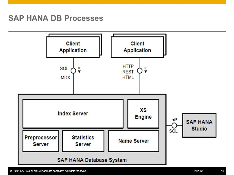 SAP HANA DB Processes Landscape: Logical System with multiple nodes