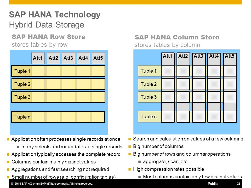 SAP HANA Technology Hybrid Data Storage