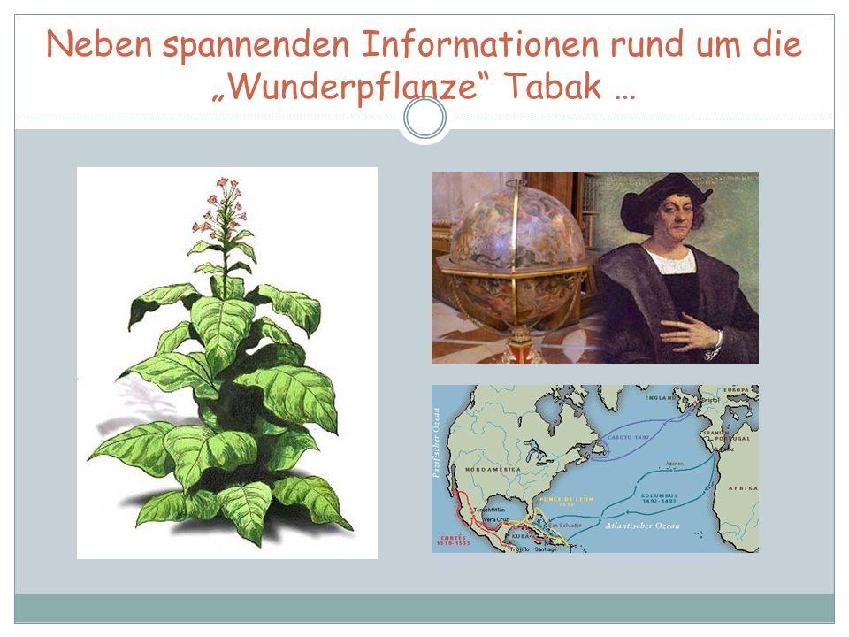 """Neben spannenden Informationen rund um die """"Wunderpflanze Tabak …"""
