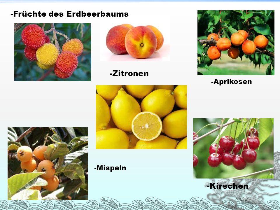 -Früchte des Erdbeerbaums