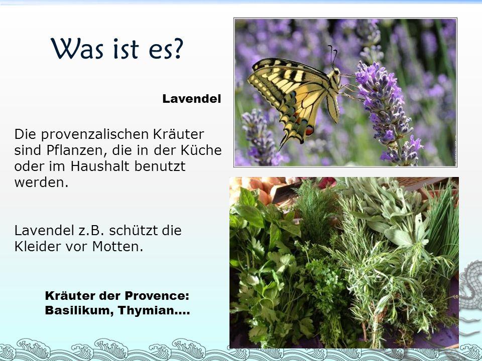 Was ist es Lavendel. Die provenzalischen Kräuter sind Pflanzen, die in der Küche oder im Haushalt benutzt werden.