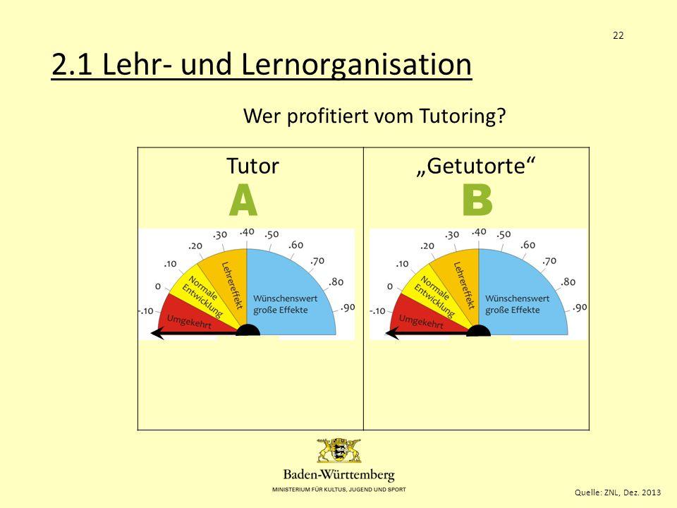 """.58 .63 2.1 Lehr- und Lernorganisation A B Tutor """"Getutorte"""