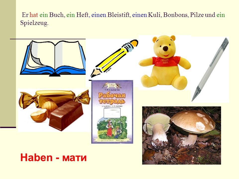 Er hat ein Buch, ein Heft, einen Bleistift, einen Kuli, Bonbons, Pilze und ein Spielzeug.