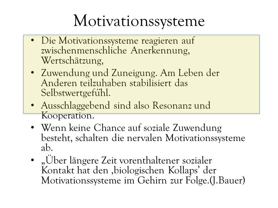 Motivationssysteme Die Motivationssysteme reagieren auf zwischenmenschliche Anerkennung, Wertschätzung,