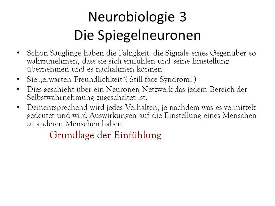 Neurobiologie 3 Die Spiegelneuronen