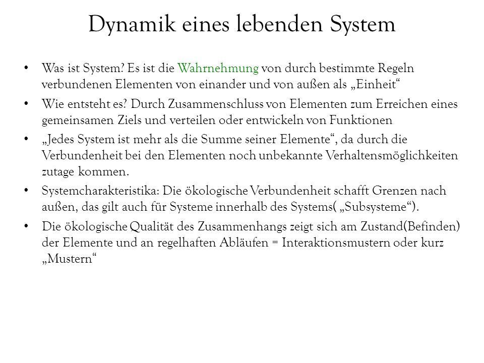 Dynamik eines lebenden System
