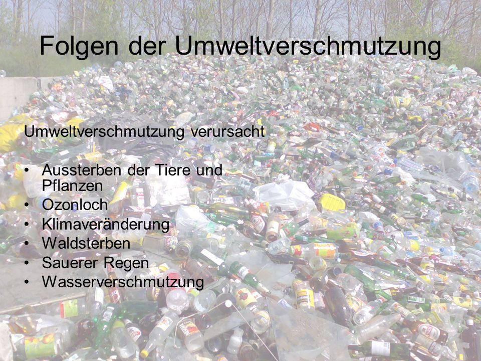 Folgen der Umweltverschmutzung