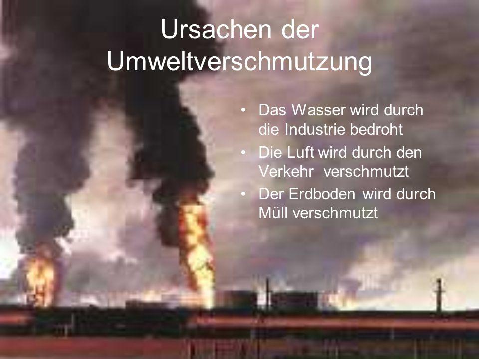 Ursachen der Umweltverschmutzung