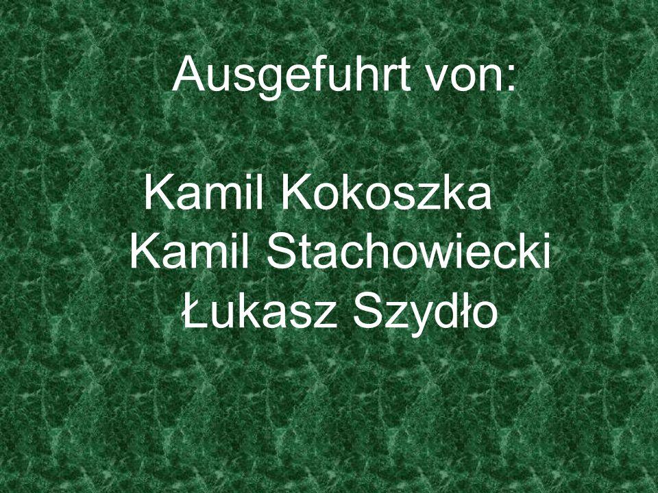Ausgefuhrt von: Kamil Kokoszka Kamil Stachowiecki Łukasz Szydło
