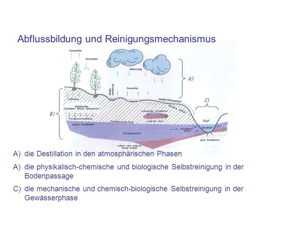Abflussbildung und Reinigungsmechanismus
