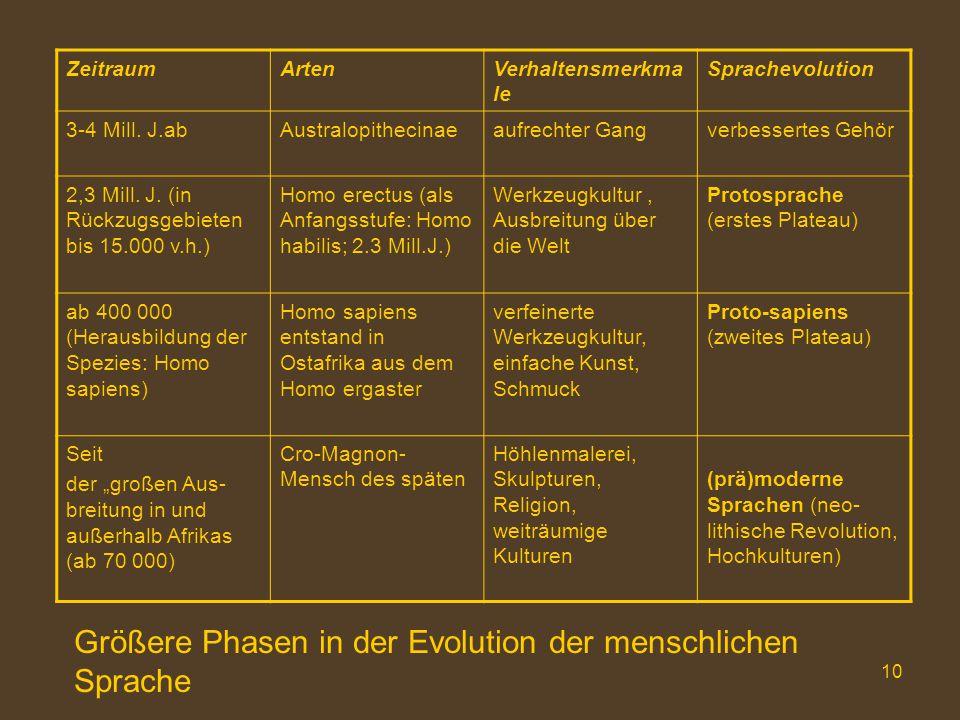 Größere Phasen in der Evolution der menschlichen Sprache