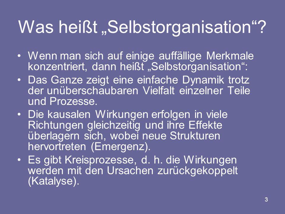"Was heißt ""Selbstorganisation"
