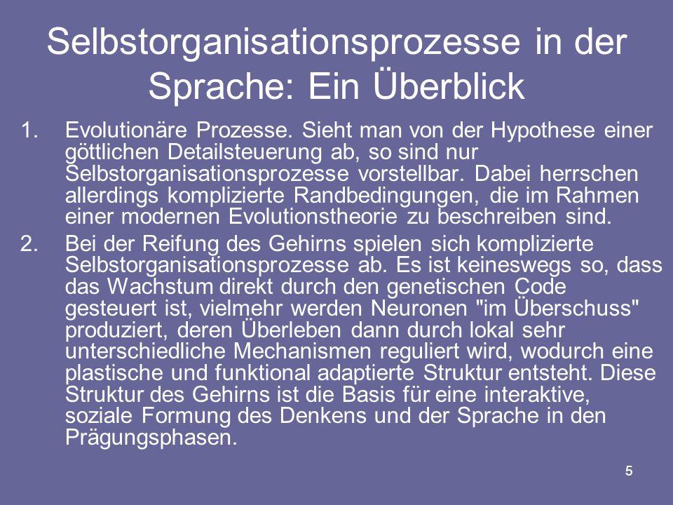 Selbstorganisationsprozesse in der Sprache: Ein Überblick