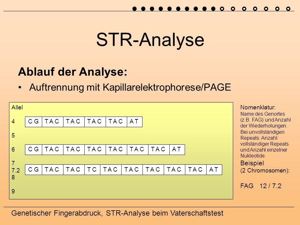 STR-Analyse Ablauf der Analyse: