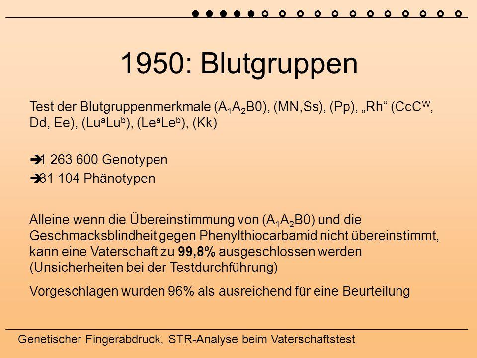 ˜ ˜ ˜ ˜ ˜ › › › › › › › › › › › › 1950: Blutgruppen.