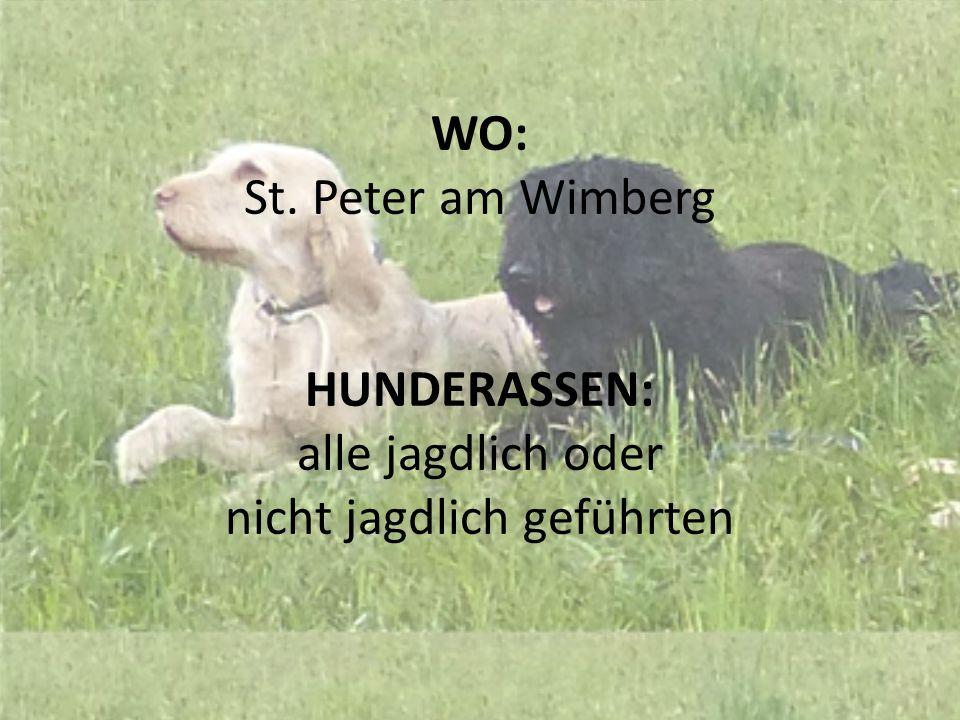 WO: St. Peter am Wimberg HUNDERASSEN: alle jagdlich oder nicht jagdlich geführten