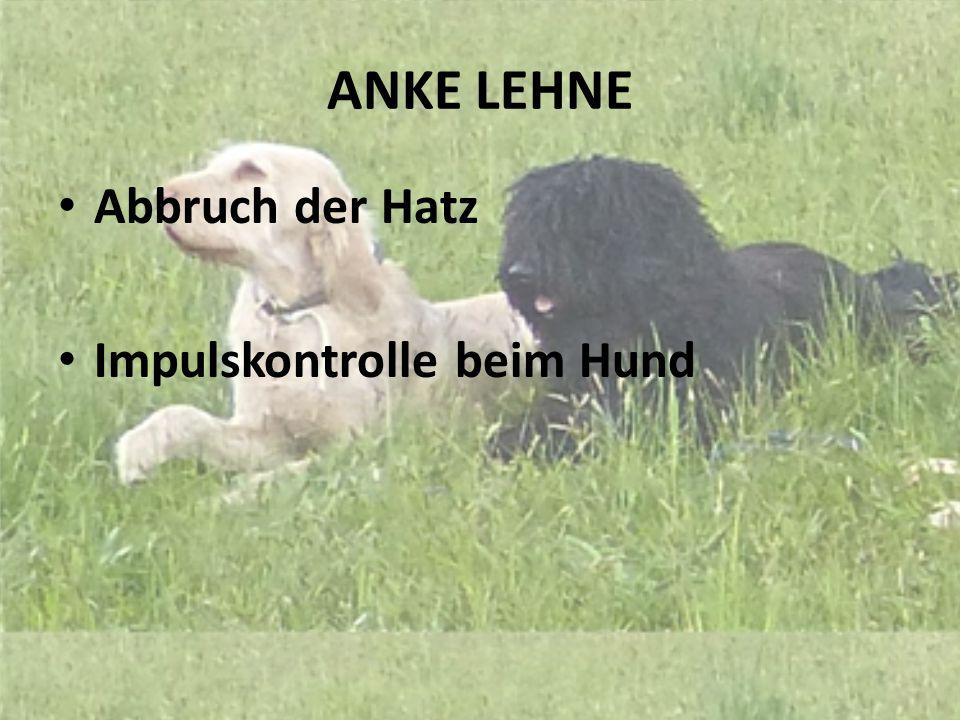 ANKE LEHNE Abbruch der Hatz Impulskontrolle beim Hund