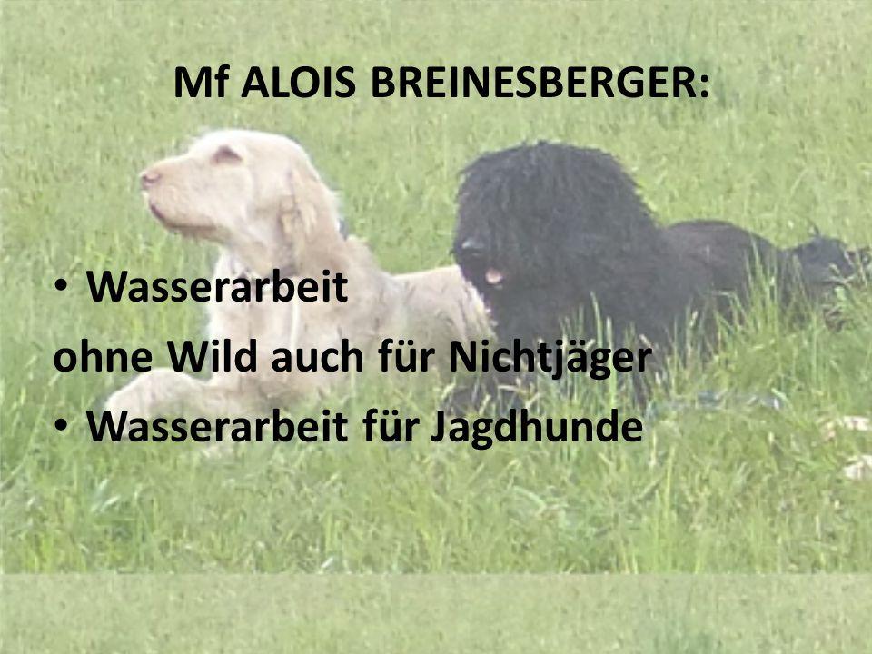 Mf ALOIS BREINESBERGER: