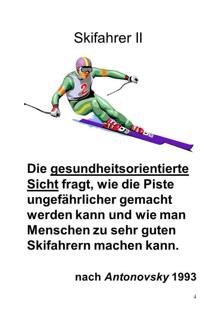 Skifahrer II