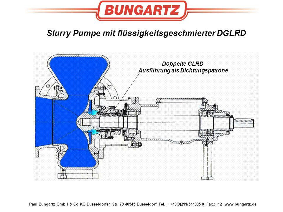 Slurry Pumpe mit flüssigkeitsgeschmierter DGLRD