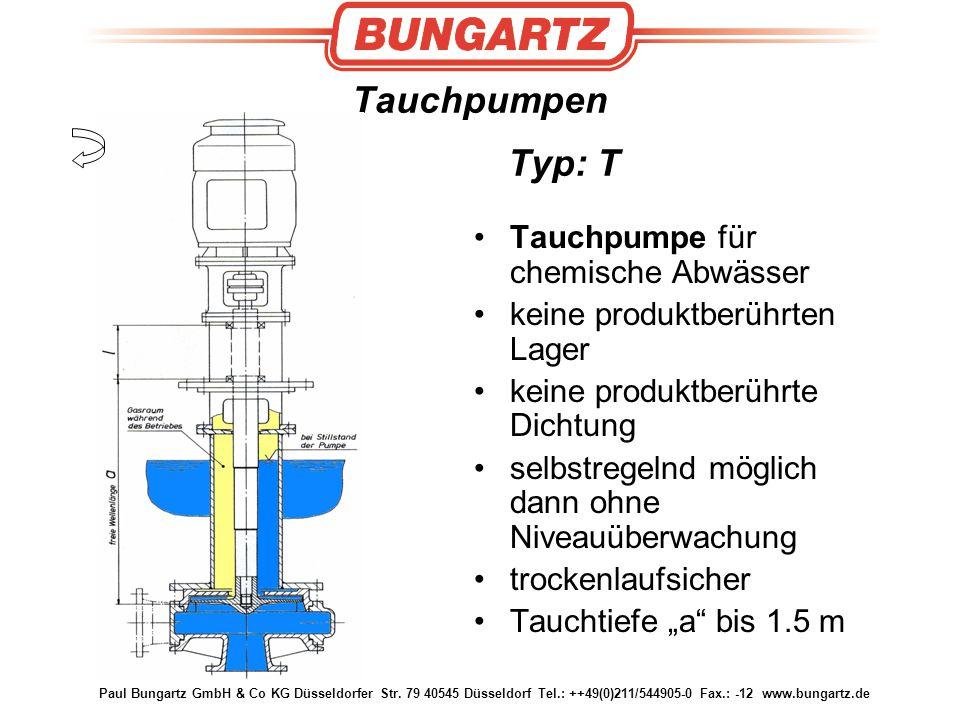 Tauchpumpen Typ: T Tauchpumpe für chemische Abwässer