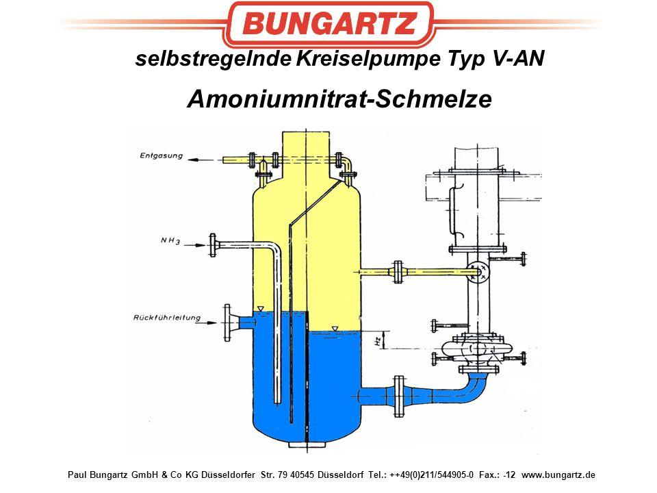selbstregelnde Kreiselpumpe Typ V-AN Amoniumnitrat-Schmelze