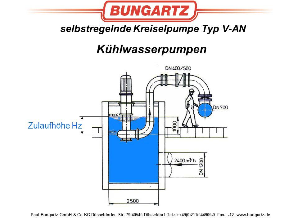 selbstregelnde Kreiselpumpe Typ V-AN Kühlwasserpumpen