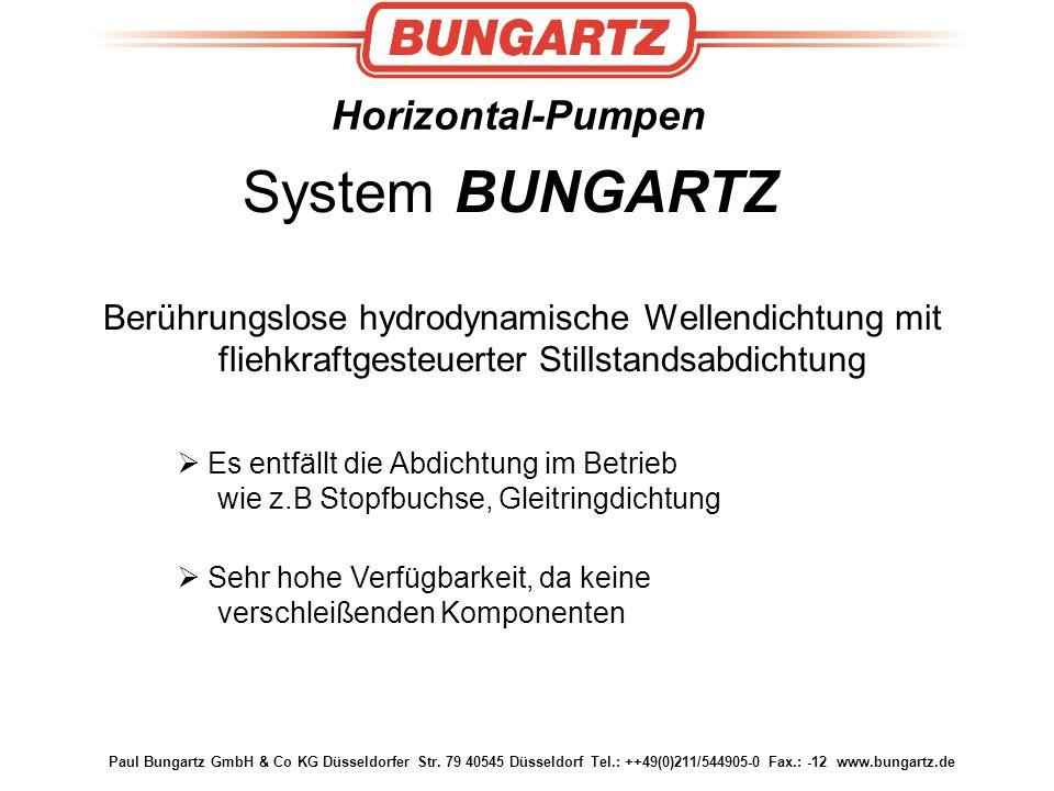 System BUNGARTZ Horizontal-Pumpen