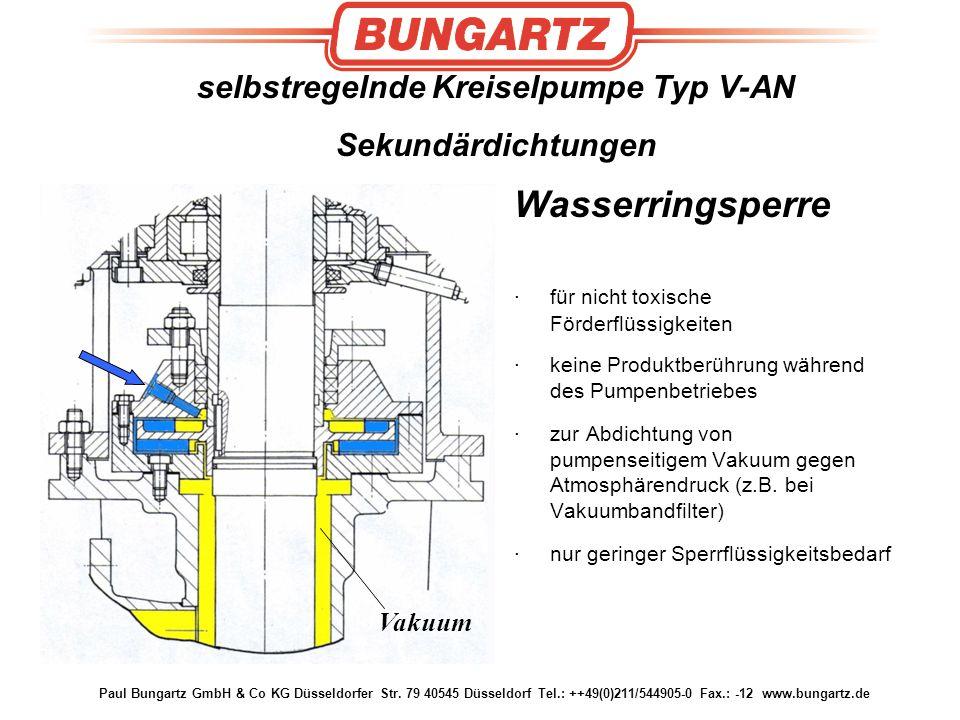 selbstregelnde Kreiselpumpe Typ V-AN Sekundärdichtungen Wasserringsperre