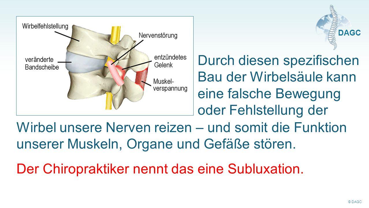 Durch diesen spezifischen Bau der Wirbelsäule kann eine falsche Bewegung oder Fehlstellung der