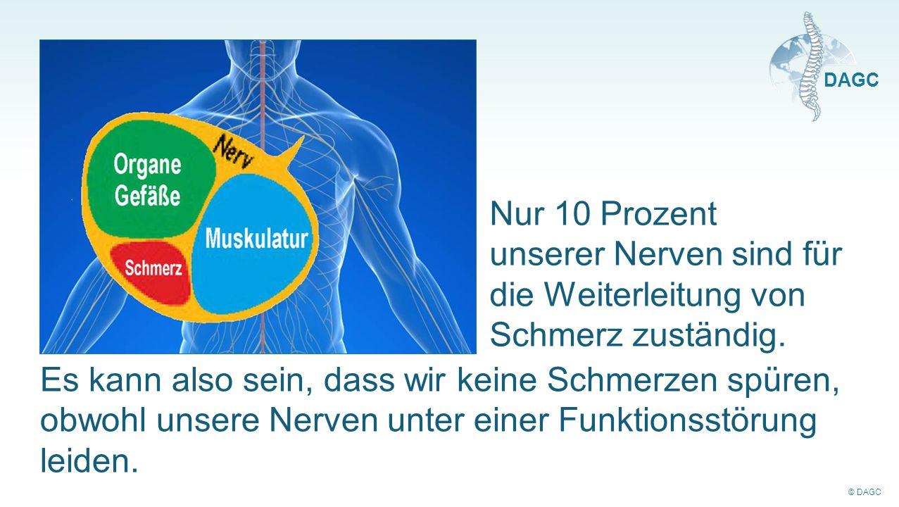 Nur 10 Prozent unserer Nerven sind für die Weiterleitung von Schmerz zuständig.