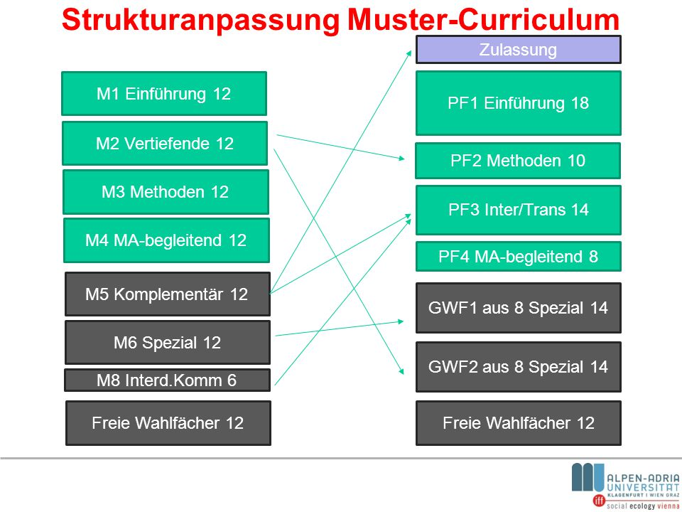 Strukturanpassung Muster-Curriculum