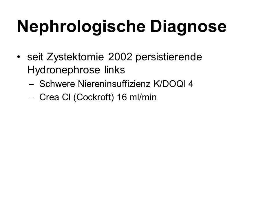 Nephrologische Diagnose
