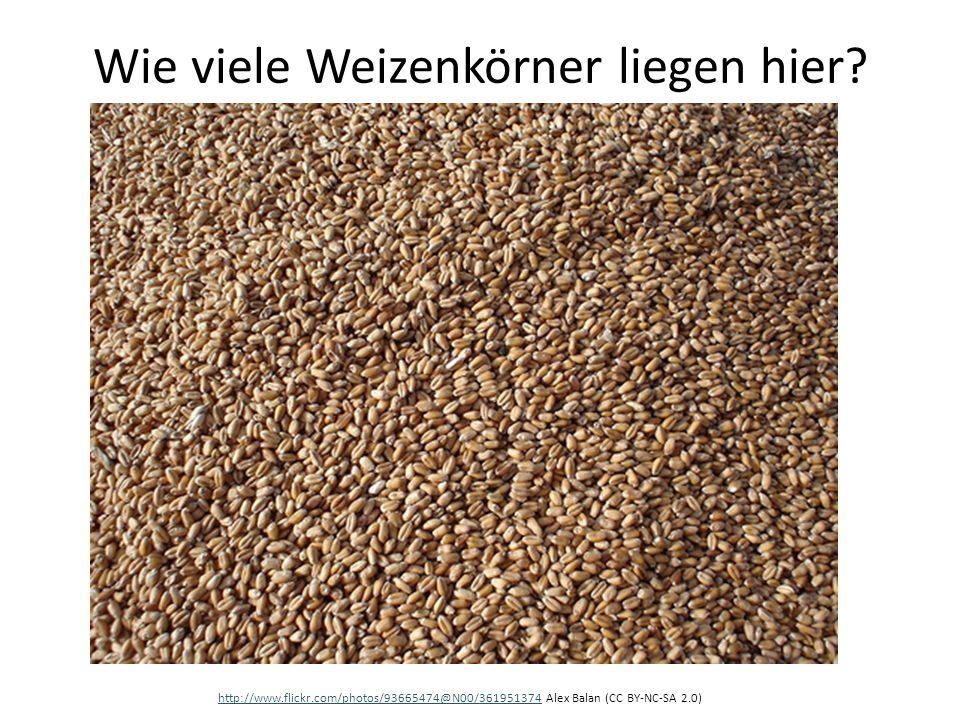 Wie viele Weizenkörner liegen hier