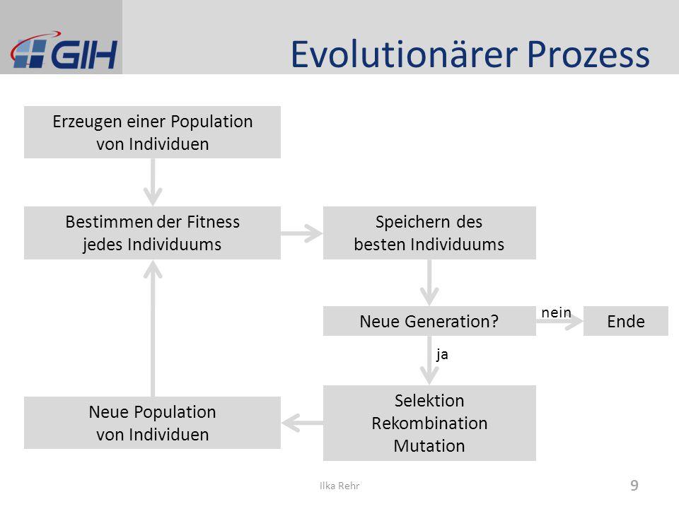 Evolutionärer Prozess