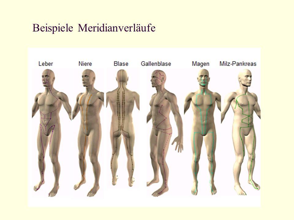 Beispiele Meridianverläufe