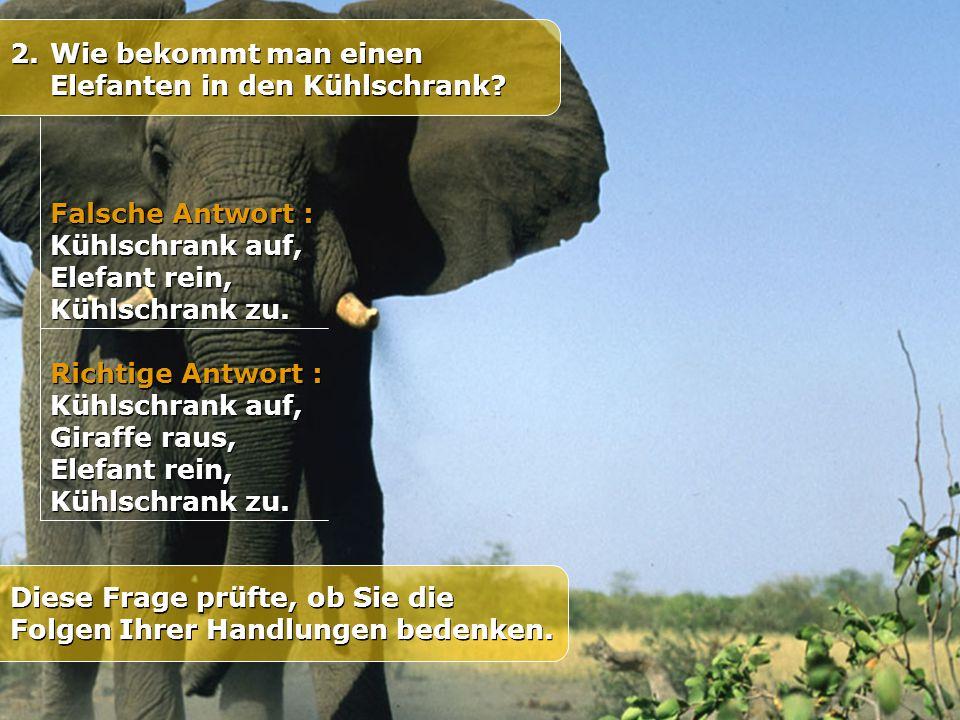 Wie bekommt man einen Elefanten in den Kühlschrank