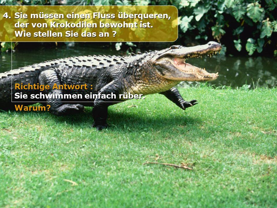 4. Sie müssen einen Fluss überqueren, der von Krokodilen bewohnt ist