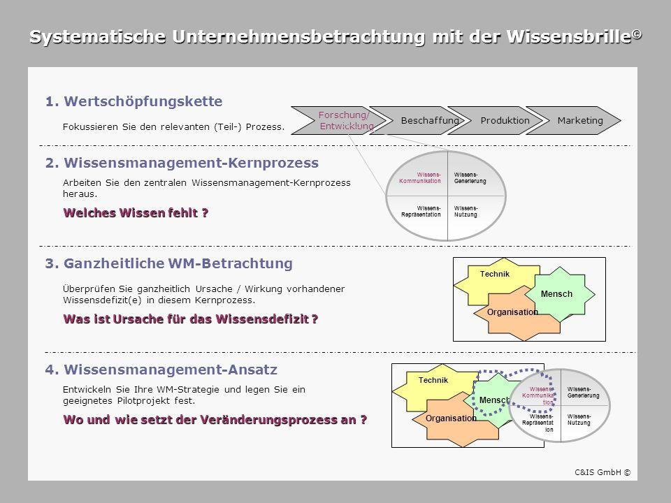 Systematische Unternehmensbetrachtung mit der Wissensbrille©