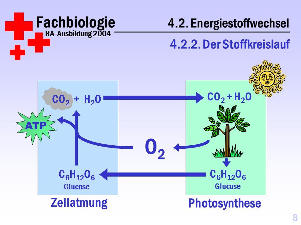 Fachbiologie 4.2. Energiestoffwechsel
