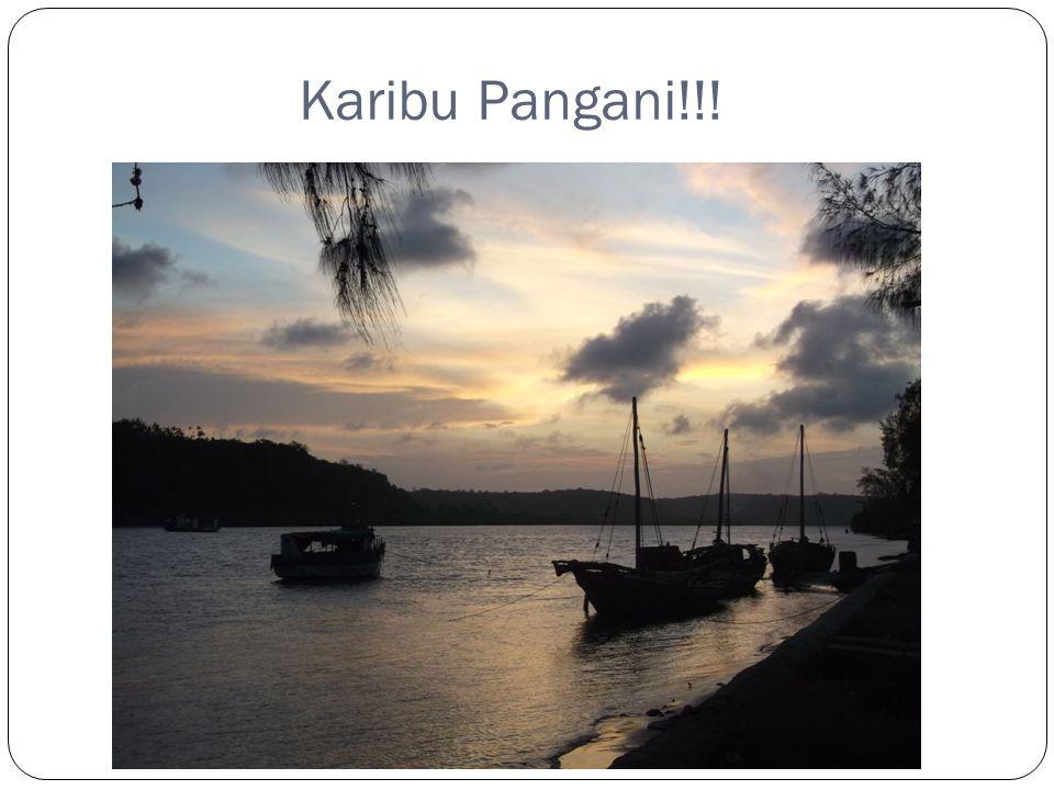 Karibu Pangani!!!