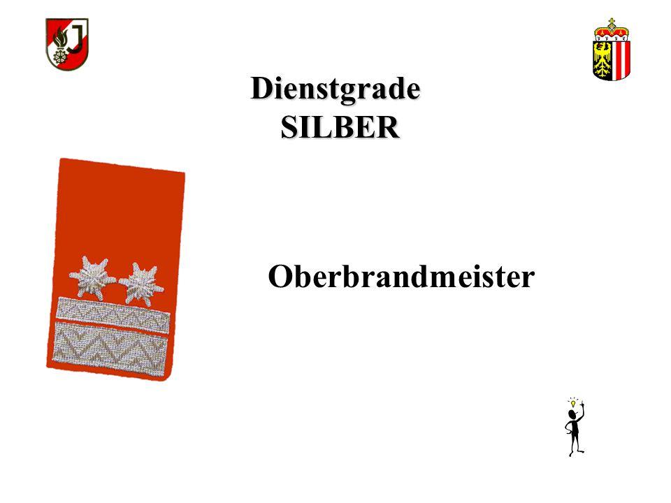 Dienstgrade SILBER Oberbrandmeister