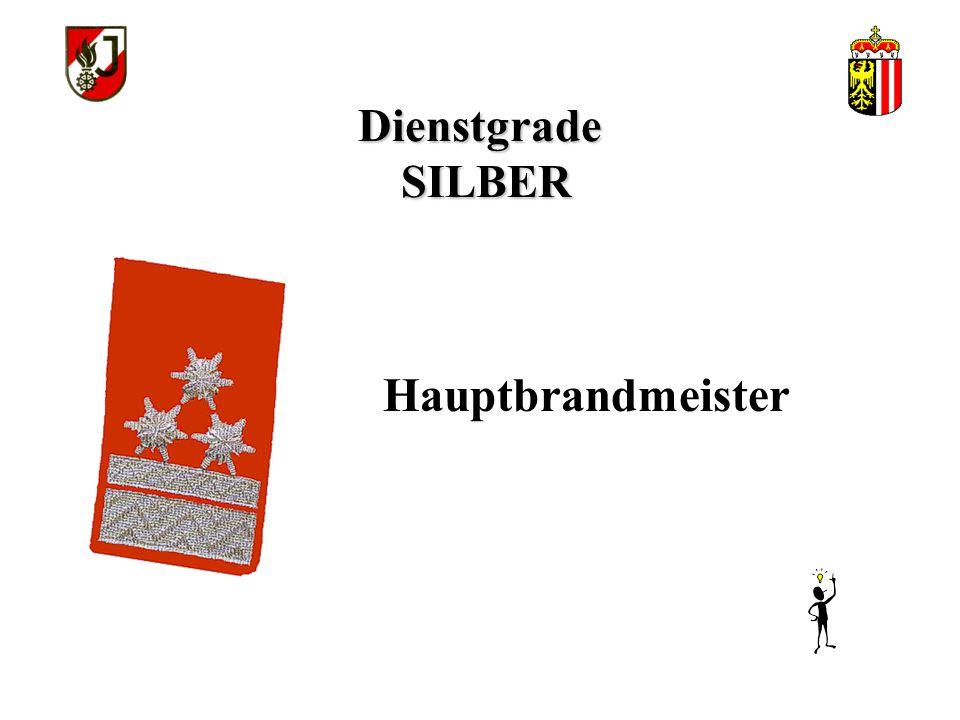 Dienstgrade SILBER Hauptbrandmeister