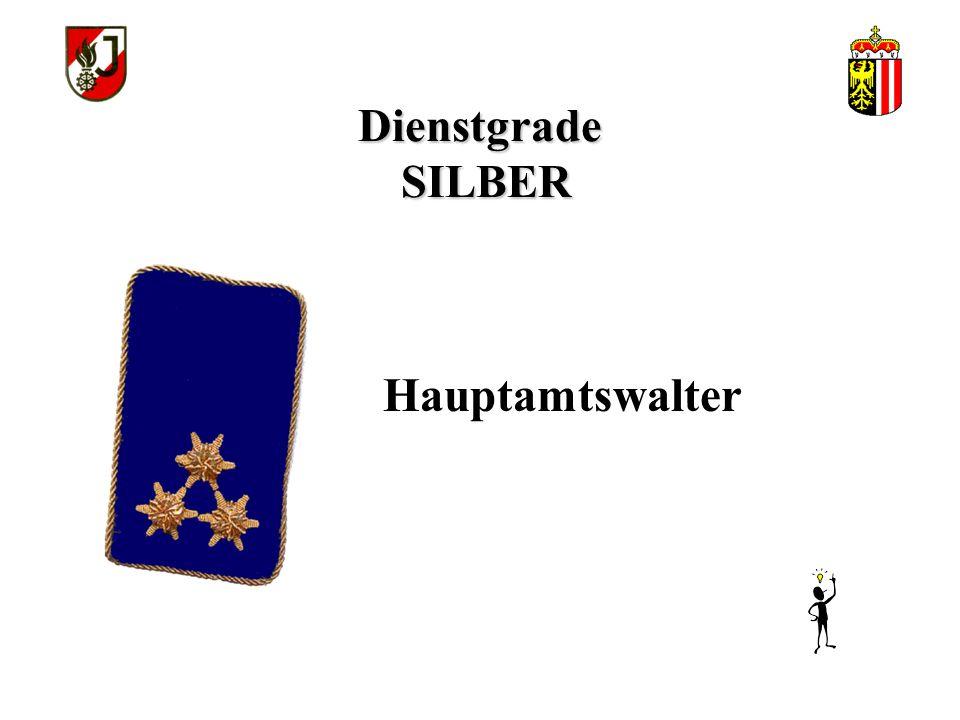 Dienstgrade SILBER Hauptamtswalter