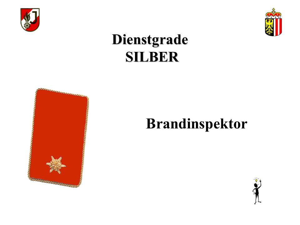 Dienstgrade SILBER Brandinspektor